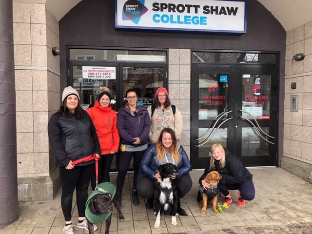sprott shaw college kamloops campus community support worker students with dogs for selfcare